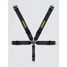 Schroth Profi III-5 Point Belt